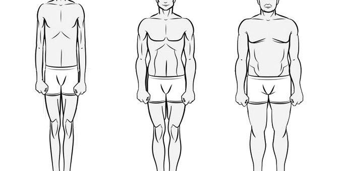 3 body type.