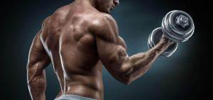Muscular memory